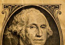 Washington Dollar Portrait