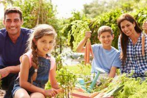 Family-farming-carrots
